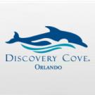 Discovery Cove Day Resort + NADO Com Golfinho + SeaWorld Orlando + Aquatica Orlando